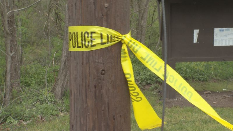Skeletal remains believed to be those of a Wood County man missing since August were found...