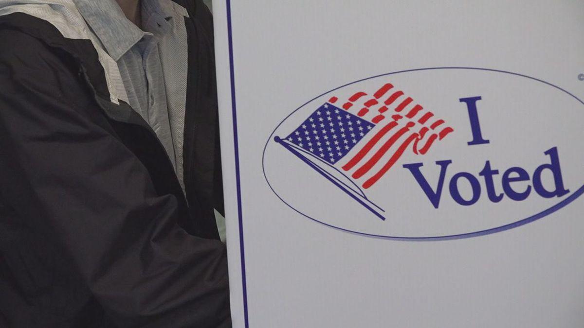 A voter voting in the June primaries.