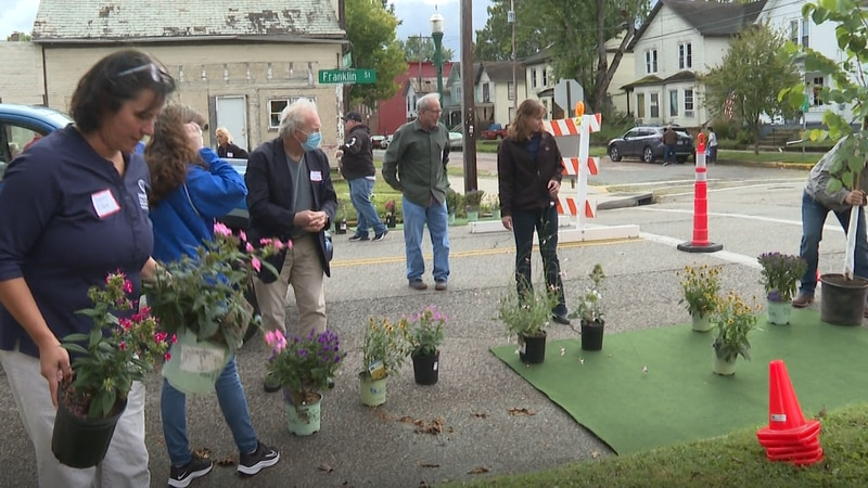 People placed plants where they thought they would improve the area-whether it be to collect...