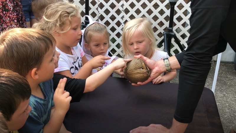 Kids touch an armadillo from the Columbus Zoo