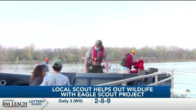 Local scout helps with wildlife