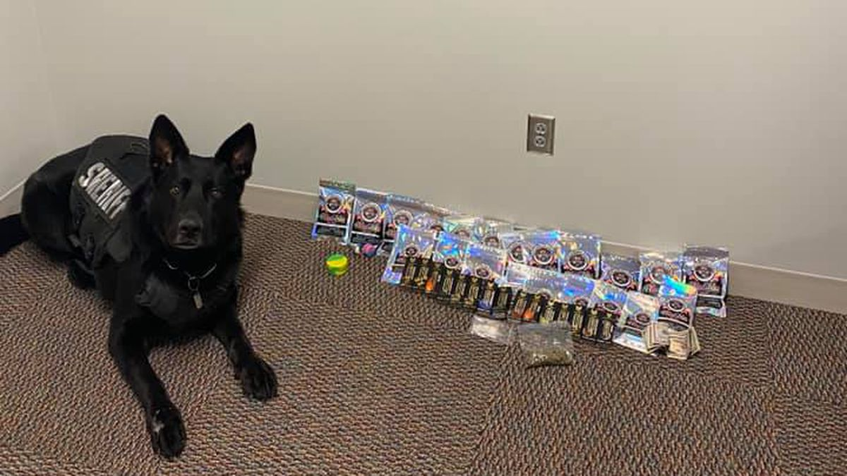 K9 Drago and THC products