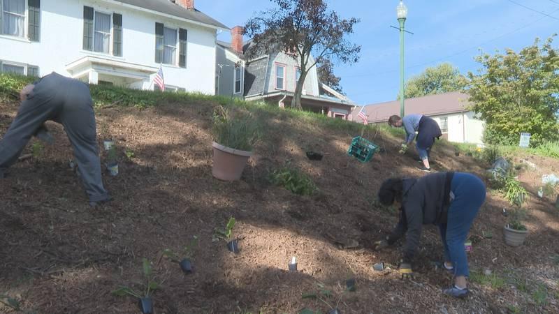 Harmar Neighborhood Planting Event held by Green Sanctuary Committee