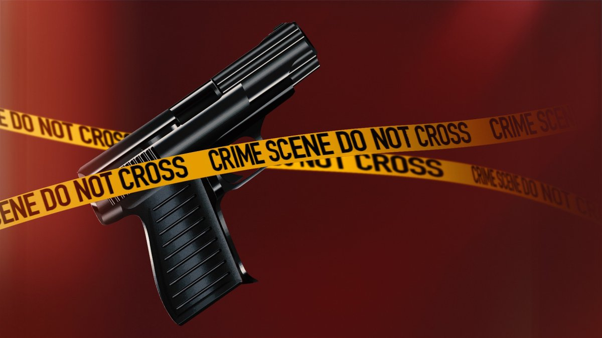 Two police officers were hurt Tuesday night while responding to a domestic dispute in...