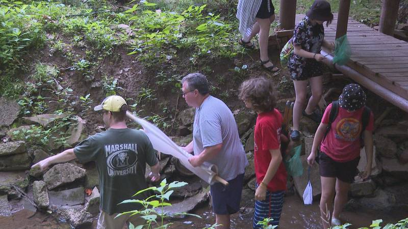 Parkersburg HS students do science activity that shows water quality in stream